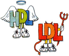 Resultado de imagen de colesterol hdl y ldl